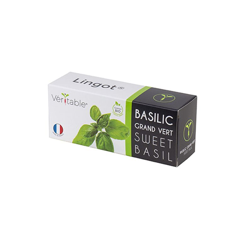 Recharge basilic grand vert bio - Véritable