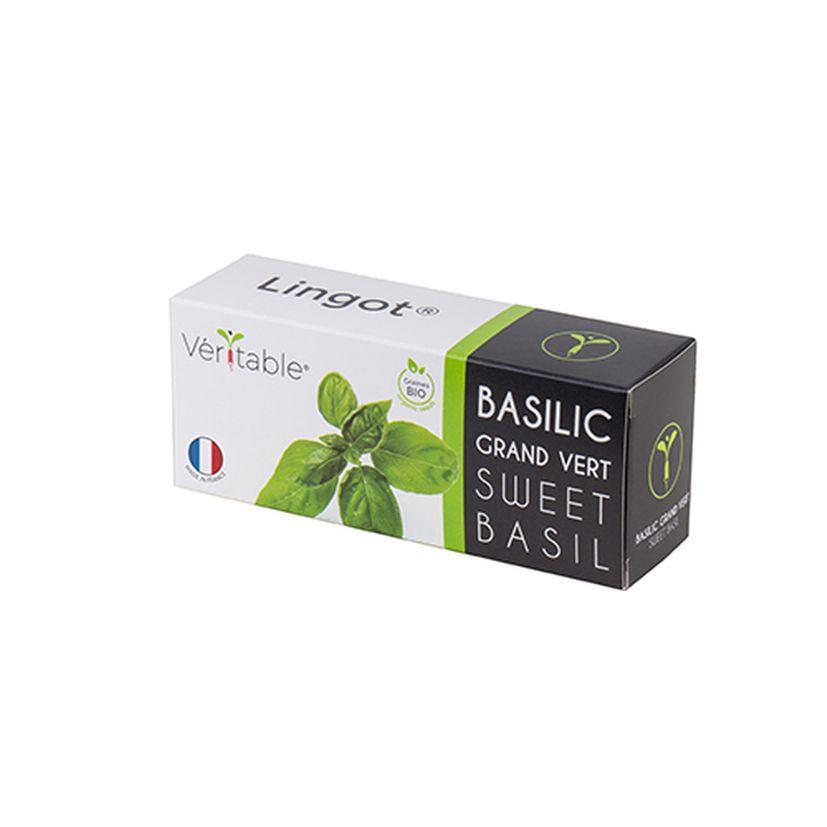 Recharge pour potager d´intérieur Véritable basilic grand vert bio - Véritable
