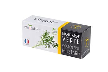 Achat en ligne Recharge pour potager d´intérieur Véritable moutarde verte bio - Véritable