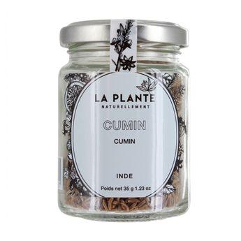 Achat en ligne Cumin BIO 35g - La Plante